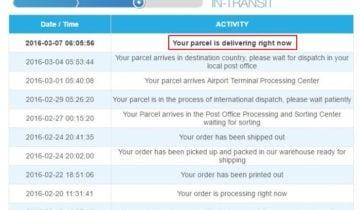 Разные компании и сервисы отслеживания используют разные аналоги статуса Submitted to shipping company at destination country