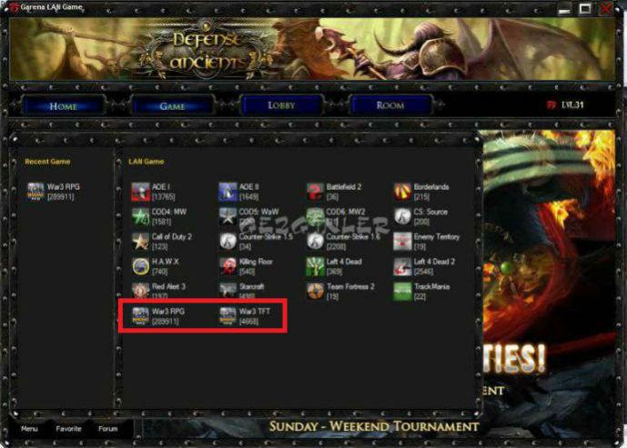Warcraft 3 в Garena LAN
