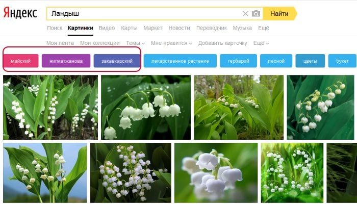 Фильтры для поиска по картинкам Яндекс