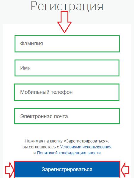 Форма для ввода данных для регистрации на сайте госуслуги