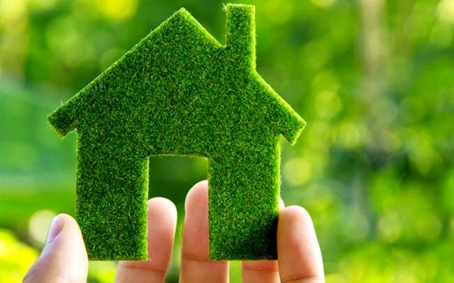 Фото зелёный дом