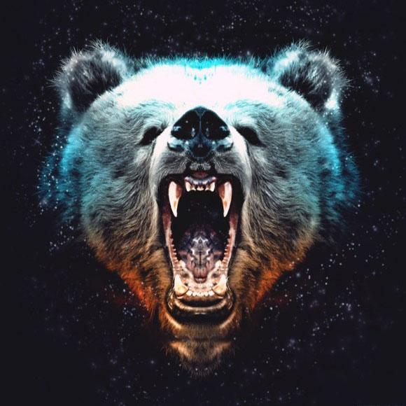 Мужская аватарка - медведь.