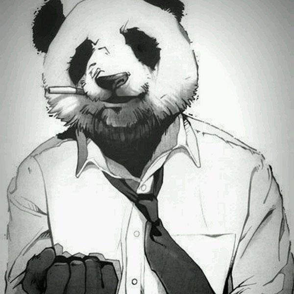 Аватарка - мужчина-панда.