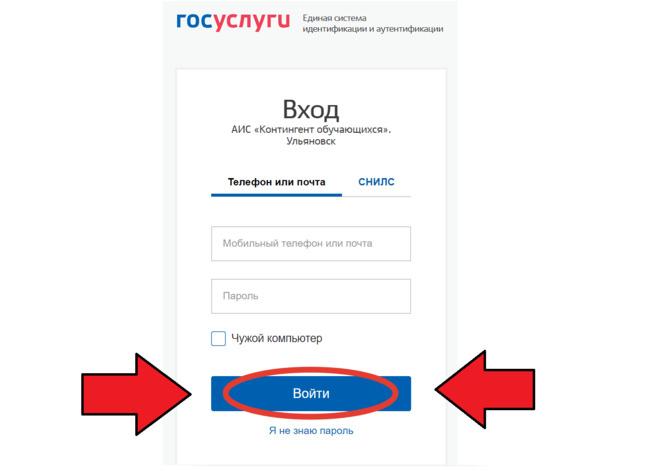Скриин Госуслуг с экрана мобильного