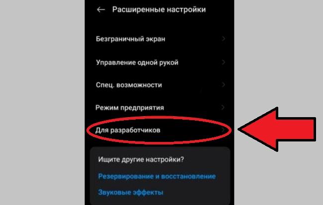 Пункт Для разработчиков